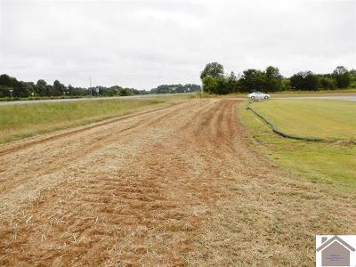 Graves County Residential Lots & Land For Sale: 000 000 S St Rt 121 South
