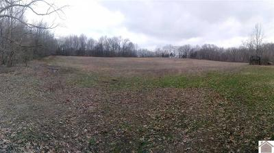 Graves County Residential Lots & Land For Sale: Knob Creek Road