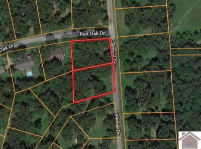 Marshall County Residential Lots & Land For Sale: Colonial Drive