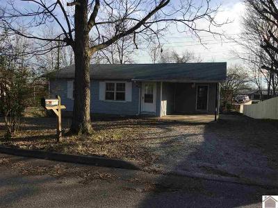 Murray Single Family Home For Sale: 301 Back Street