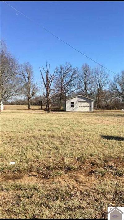 Graves County Residential Lots & Land For Sale: 509 Tom Drive
