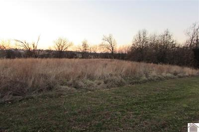 Graves County Residential Lots & Land Contract Recd - See Rmrks: Sally Lane