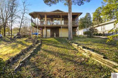 Tennessee County Single Family Home For Sale: 1165 Lakeview Drive