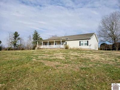 Smithland, Tiline Manufactured Home For Sale: 709 Guess Road