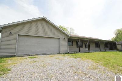 Lyon County, Trigg County Single Family Home For Sale: 3820 Rockcastle Rd.