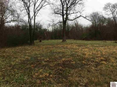 Residential Lots & Land For Sale: Boyds Landing Rd