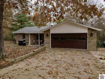 Murray, New Concord, Grand Rivers, Benton, Gilbertsville Single Family Home For Sale: 112 Panorama