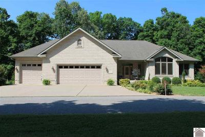 Livingston County, Lyon County, Trigg County Single Family Home For Sale: 1156 Rolling Mills Rd