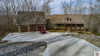 Cadiz, Grand Rivers, Trigg County, Eddyville, Kuttawa Single Family Home For Sale: 554 Waterfowl Way