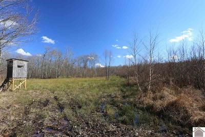 Calloway County Residential Lots & Land For Sale: State Line Road East