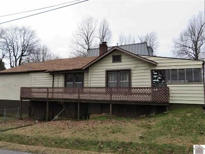 Paducah Single Family Home For Sale: 1200 Davis Ave