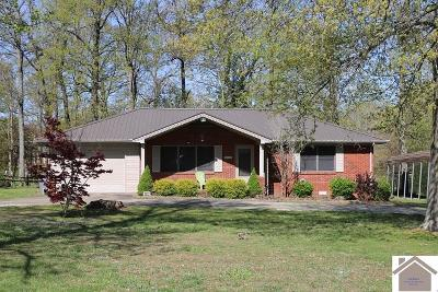 Calloway County Single Family Home For Sale: 2925 Old Salem Road