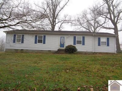 Hickory Single Family Home For Sale: 2977 St Rt 945