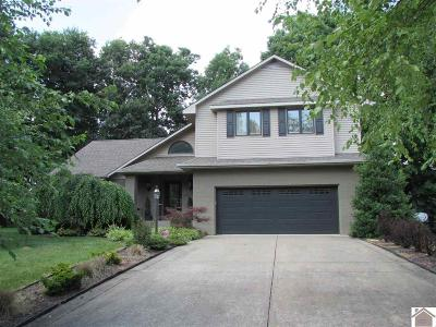 Paducah Single Family Home For Sale: 924 Lakeview Drive
