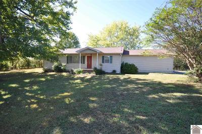 Marshall County Multi Family Home For Sale: 395 Peggy Ann Springs Road