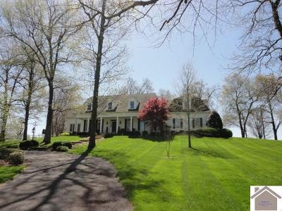 Mayfield Single Family Home For Sale: 116 Crestwood