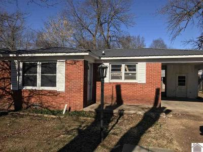 Mayfield Single Family Home For Sale: 713 Wright Street