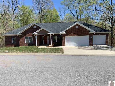 Cadiz KY Single Family Home For Sale: $310,000