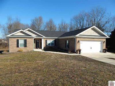 Graves County Single Family Home Contract Recd - See Rmrks: 90 Abigayle Way