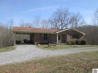 Cadiz KY Single Family Home For Sale: $89,900