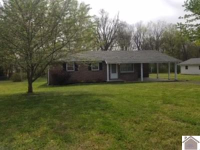 Livingston County Single Family Home For Sale: 338 Marsha Drive