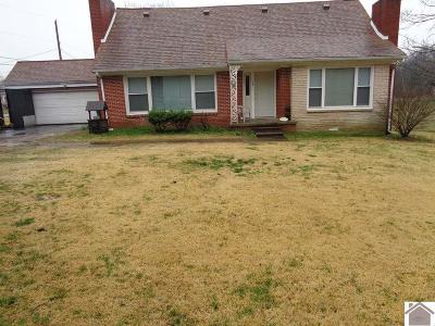 Paducah Single Family Home For Sale: 139 Nolan Drive