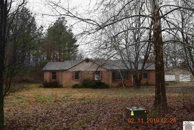 Calloway County, Marshall County Single Family Home For Sale: 65 Wildcat Lane