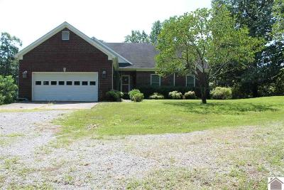 Lyon County, Trigg County Single Family Home For Sale: 80 S Will Eli Rd