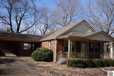 Calloway County Single Family Home For Sale: 2005 Radio Road
