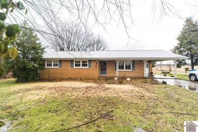 Princeton KY Single Family Home For Sale: $99,900