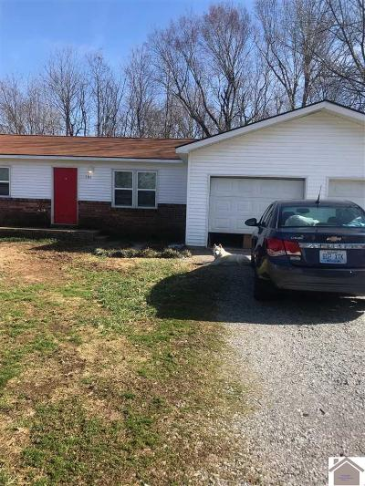 Livingston County Single Family Home For Sale: 598 Golden Meadow Lane