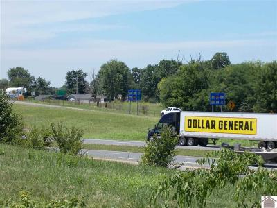 Marshall County Commercial For Sale: 314 Us Highway 68 Lot 1