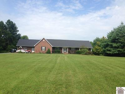 Paducah Single Family Home For Sale: 5819 Old Us 45