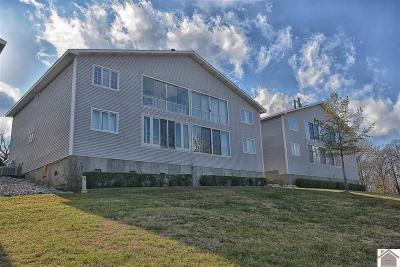 Murray, New Concord, Grand Rivers, Benton, Gilbertsville Condo/Townhouse For Sale: 181 Big Bear Resort Rd