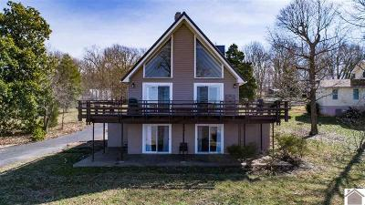 Cadiz, Trigg County, Eddyville, Grand Rivers, Kuttawa Single Family Home For Sale: 530 Rockcastle Lakeshore Dr