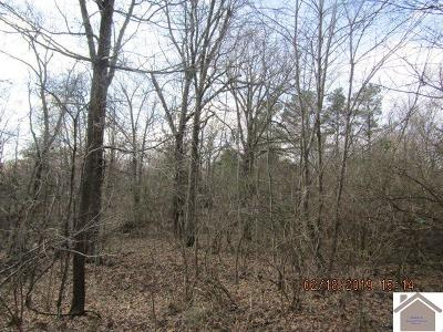 Paducah Residential Lots & Land For Sale: Atlanta Ave