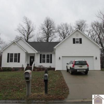 Single Family Home Contract Recd - See Rmrks: 8240 Tarpan Trail