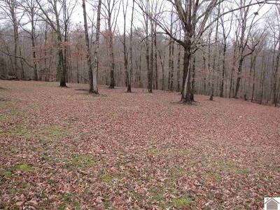 Benton KY Residential Lots & Land For Sale: $17,770