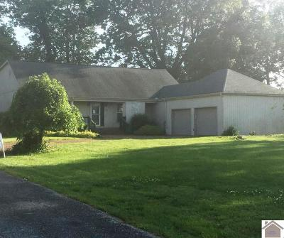 Marshall County Single Family Home For Sale: 90 Wini Place