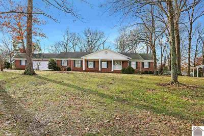 Murray Single Family Home Contract Recd - See Rmrks: 3157 W State Route 94