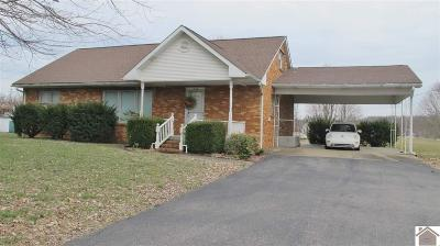 Livingston County Single Family Home For Sale: 730 Shelby Rd