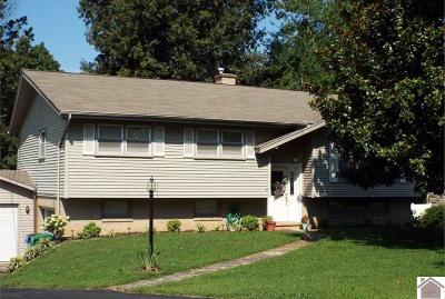 Paducah Single Family Home For Sale: 239 Pepper Lane
