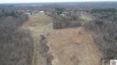 Benton Residential Lots & Land For Sale: Symsonia Hwy