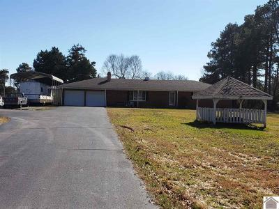 Marshall County Single Family Home For Sale: 5191 Us Hwy 68 W