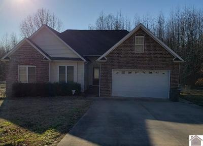 Paducah Single Family Home For Sale: 910 Wayside Dr