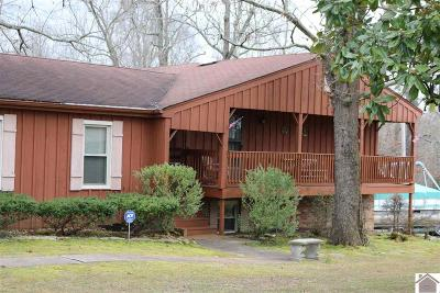 Marshall County Single Family Home For Sale: 117 Sparrow