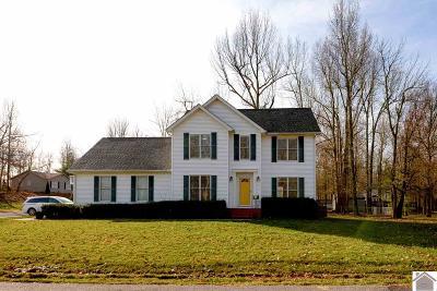 McCracken County Single Family Home For Sale: 8340 Silver Ridge Drive