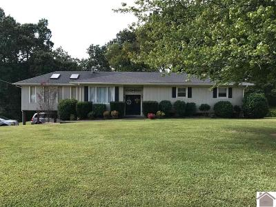 Marshall County Single Family Home For Sale: 1352 S Main Street