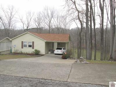 Trigg County Single Family Home For Sale: 110 Charlotte Cove