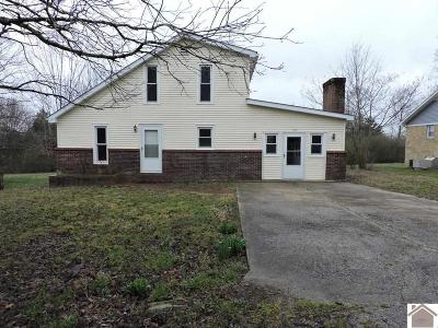 Trigg County Single Family Home For Sale: 133 Oak Lane